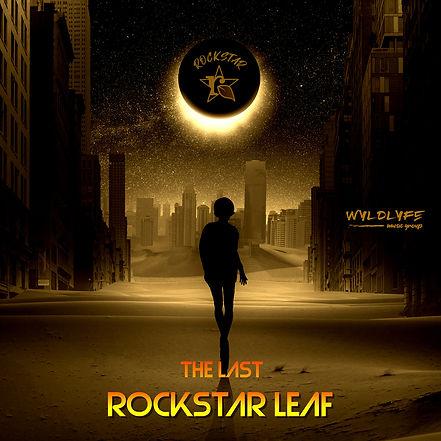 TheLastRock Star_Cover.JPG