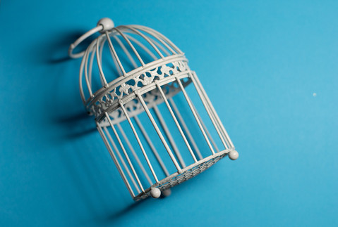 birdcage sml.jpg