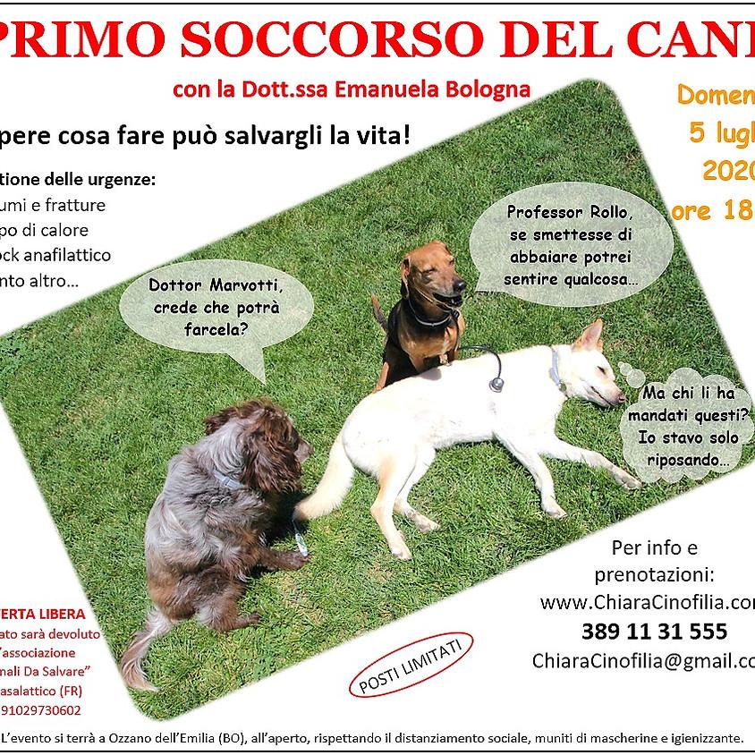 PRIMO SOCCORSO DEL CANE