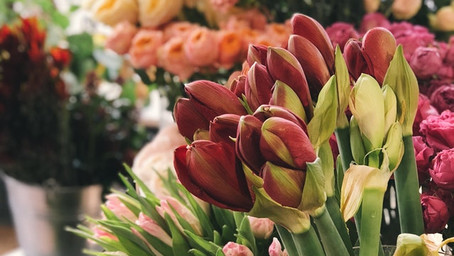 The magic of a flower shop