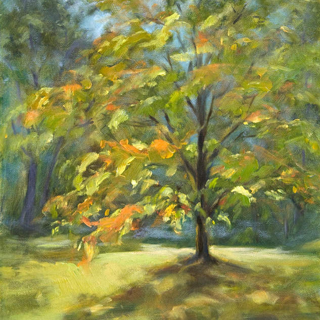 Autumn Tree 14x11.jpg