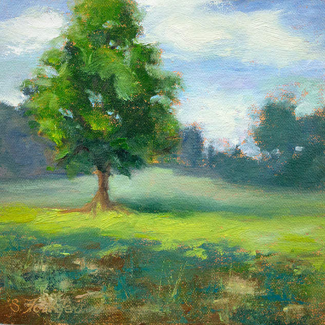 Tree Study 6x6.jpg