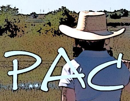 PAC_-logo--455x353.jpg