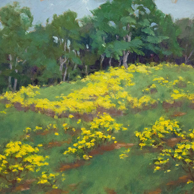 Meadow at Woodleaf 9x12.jpg