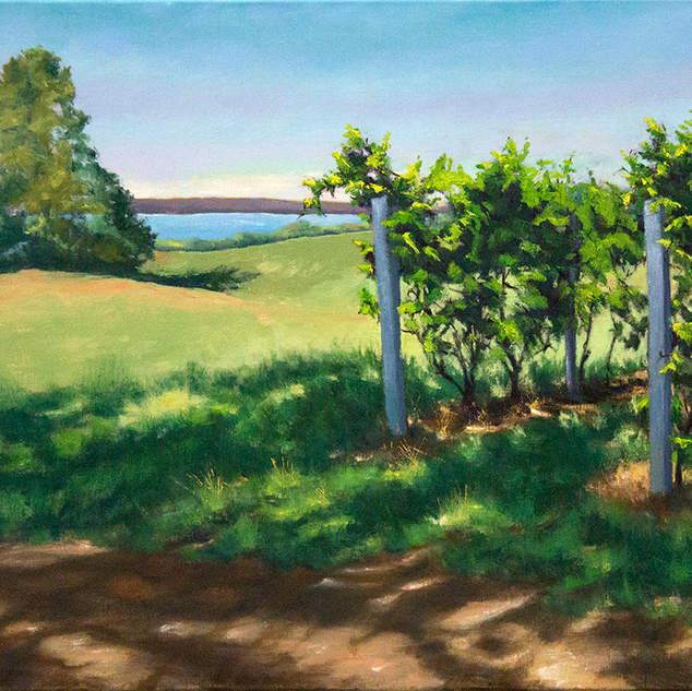 Vineyard by the Lake 24x30.jpg