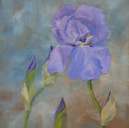 Iris 10x8.jpg