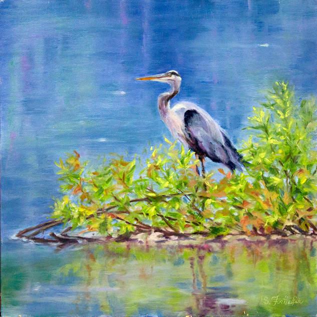 The Great Blue Heron 12x12.jpg