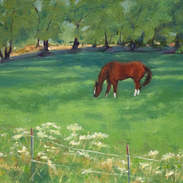 The Paint in the Pasture 8x10.jpg