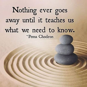 nothing-ever-goes-away-until-pema-chodro