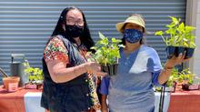 Ernestina & Eleuteria with Plants at Sal