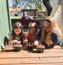 Crandall Family seeds their Start Kits I