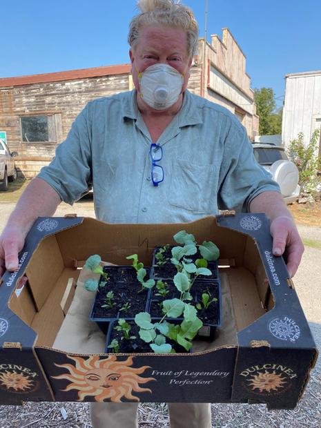 Charles Parker shows his green shirt and green thumb with his broccoli, cilantro & lettuce starts (Image getstarted)