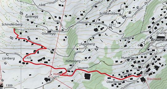 Braunwald - Alpenschlafkorb.JPG