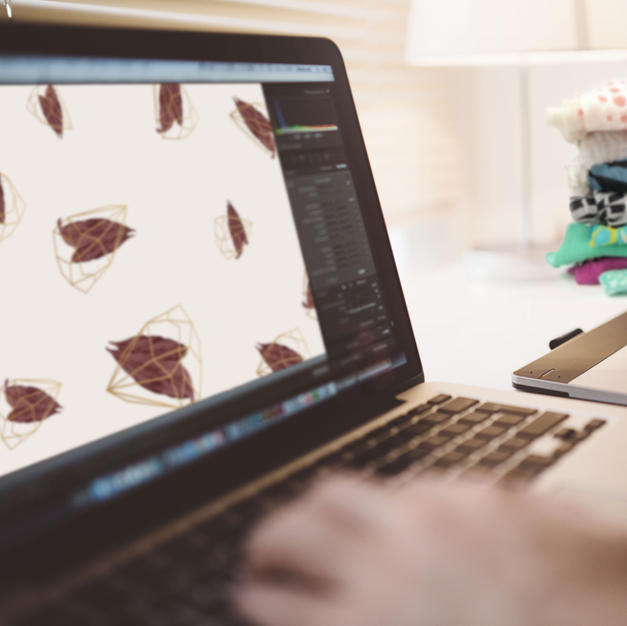 Graphic & Web Designers