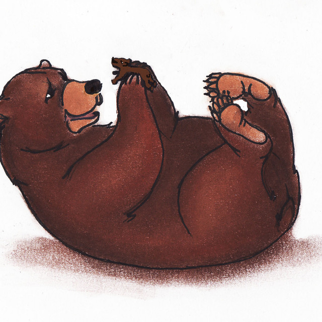 bär&meerschweinchenbär