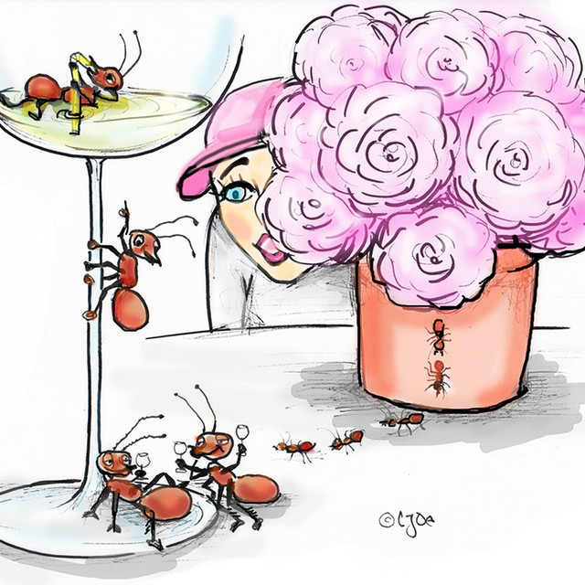ant those beautiful