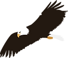 soaring-bald-eagle-vector-clipart.png
