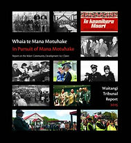 Maori-Council-Front-Cover.jpg