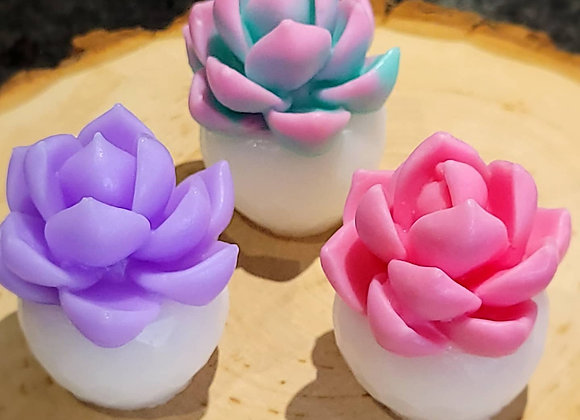 Mini Succulent White Flowerpot Series