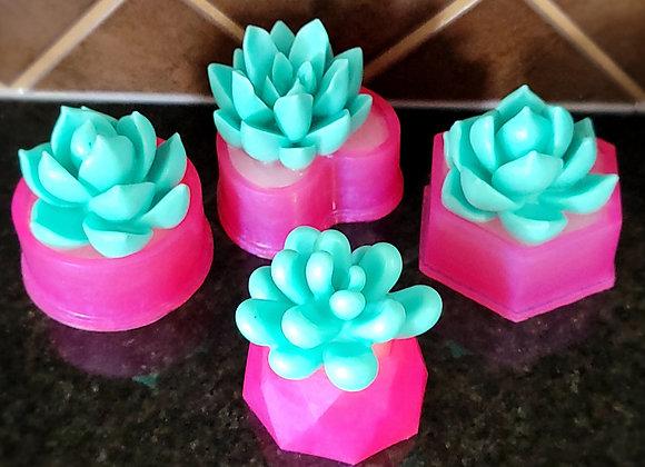 Pink Flowerpot Succulent Series