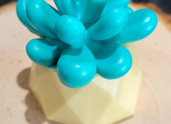 Pineapple Succulent Soap Series
