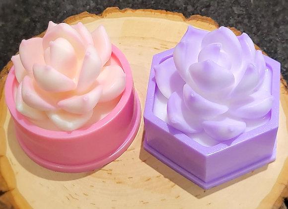 Pink/Purple Flowerpot Succulent Series