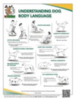 Body_Language_Infographic.jpg