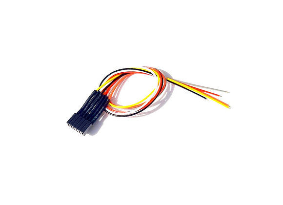 Prise / presa 5 pin NEM 651