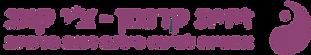 Zivit_logo_Outline-01%20(1)%20(1)_edited