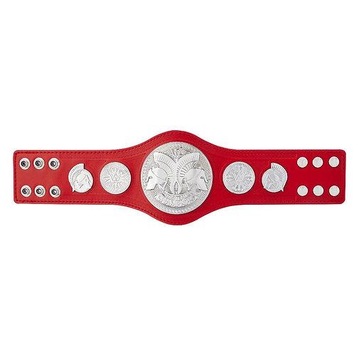 RAW TAG TEAM Mini Championship