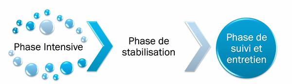 schema-phases-traitement-e1487671641739.