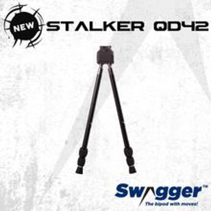 Swagger Stalker QD42