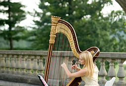 Hire a harp player in New York City, nyc