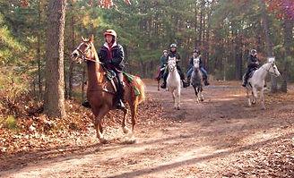 endurance-riders-comp_edited.jpg