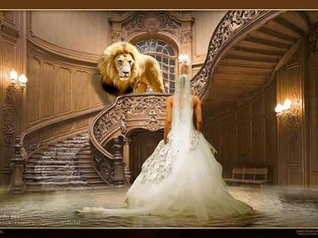 PREPARE O CAMINHO - A Noiva e o Reino