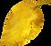 leaf_06.png