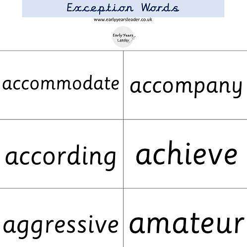 Year 5 and Year 6 Common Exception Word Flashcards