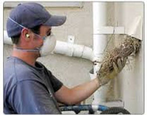 Dryer vent cleaning fo homes/business