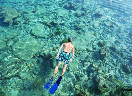 5 Snorkeling Tips To Make the Best Out of This Activity