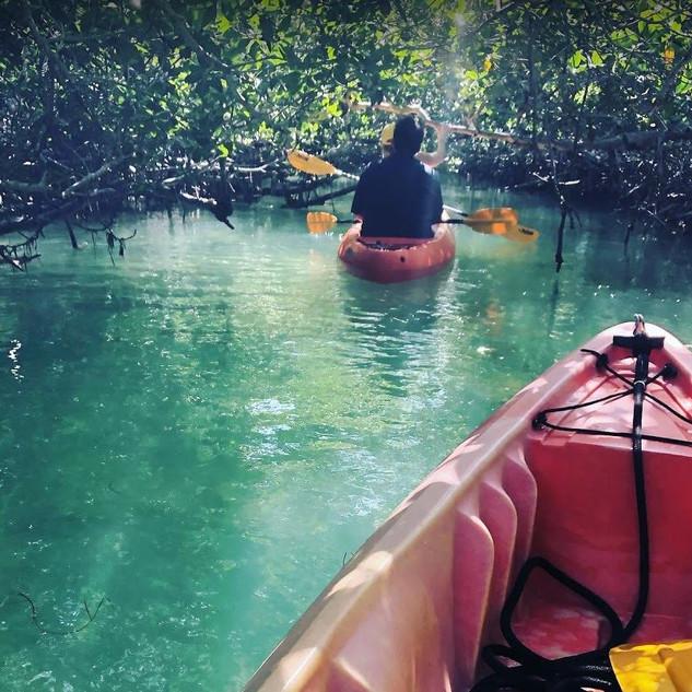 Kayaking-Tour-Key-West-5.JPG
