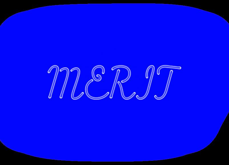 Merit NEON.png