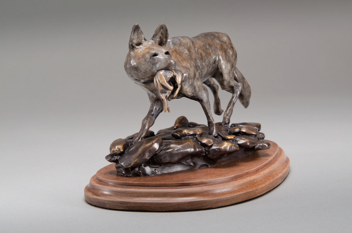 """""""Coyote"""""""