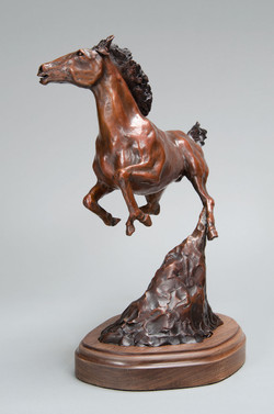 """Wild Horse"""