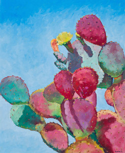 """""""Prickly Pear"""""""