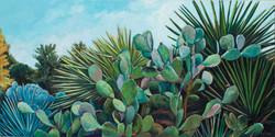 """""""Cactus Garden"""""""