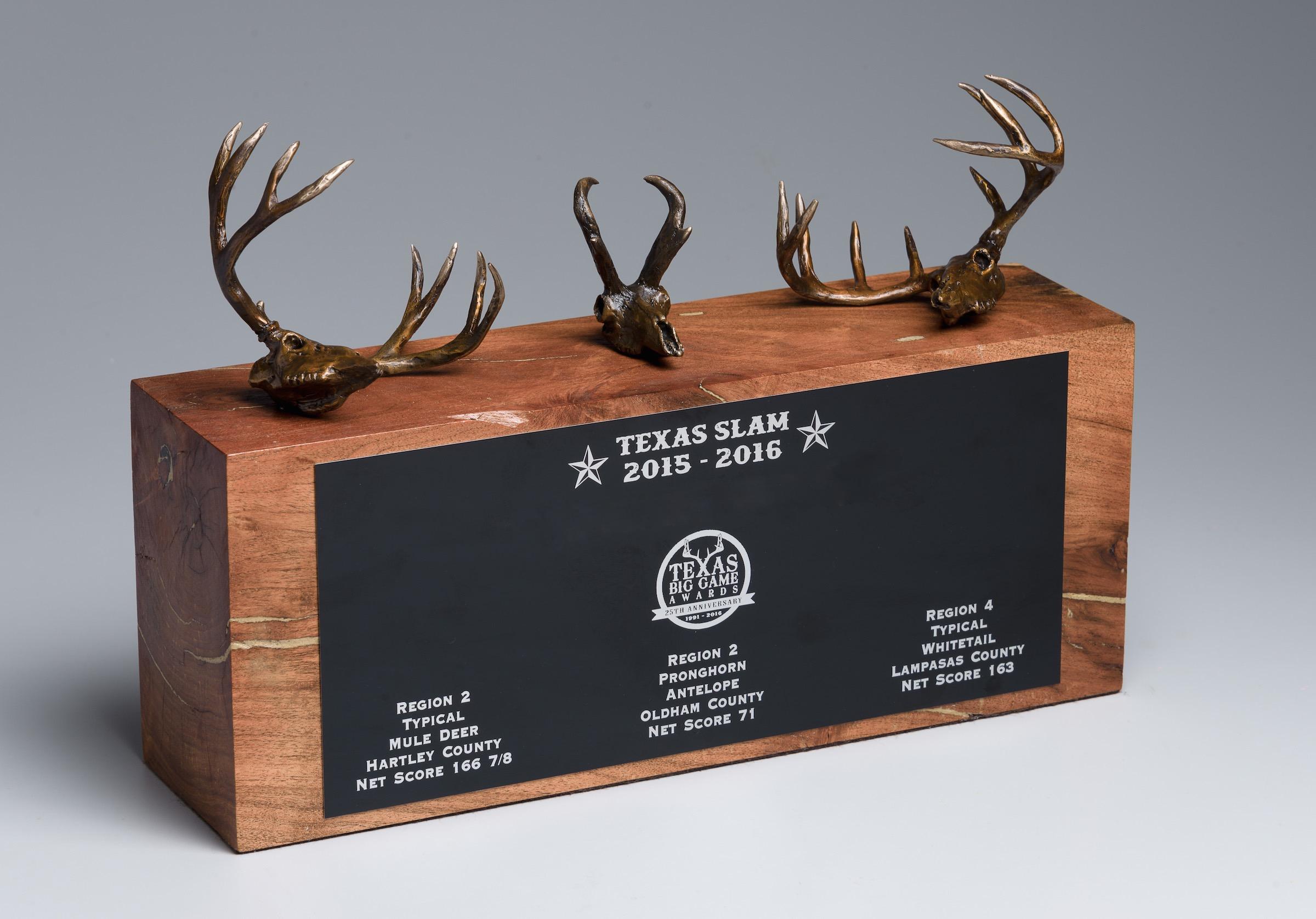 TWA Slam Award