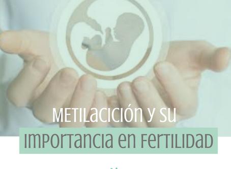 La metilación y su importancia en la Fertilidad!