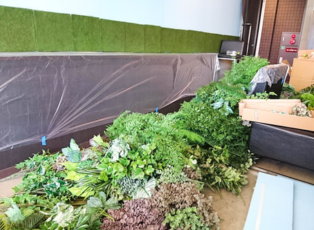 ORNIさんの壁面緑化お手伝い