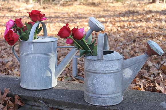 Antique Watering Cans Set of 2