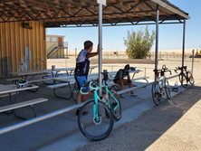 Cooling off in Glamis.... Shade in Glamis